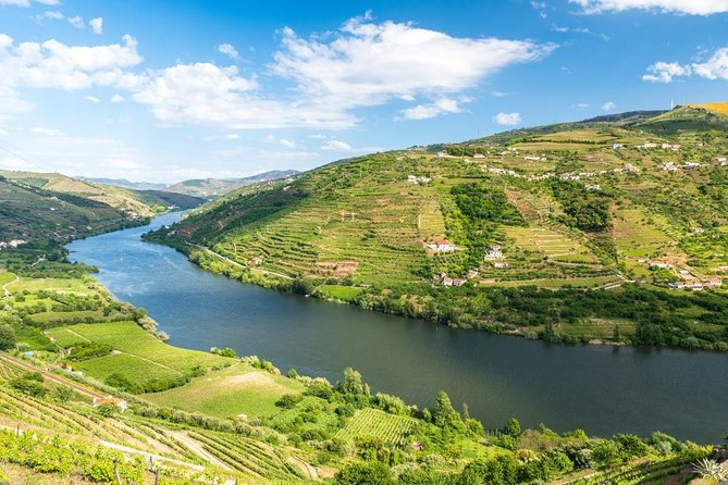 Private tour to Douro Valley with free wine tasting