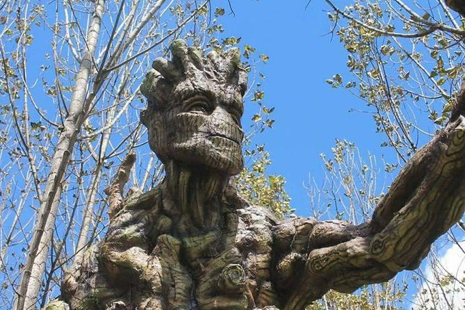 Ecological Park of baby Groot and Ents