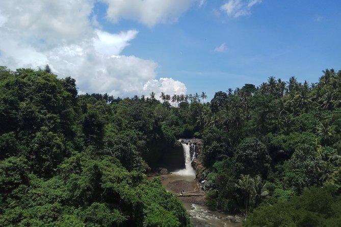 Batuan Temple,Tegenungan Waterfall, Ubud Monkey Forrest,Tegalalang Rice Terrace