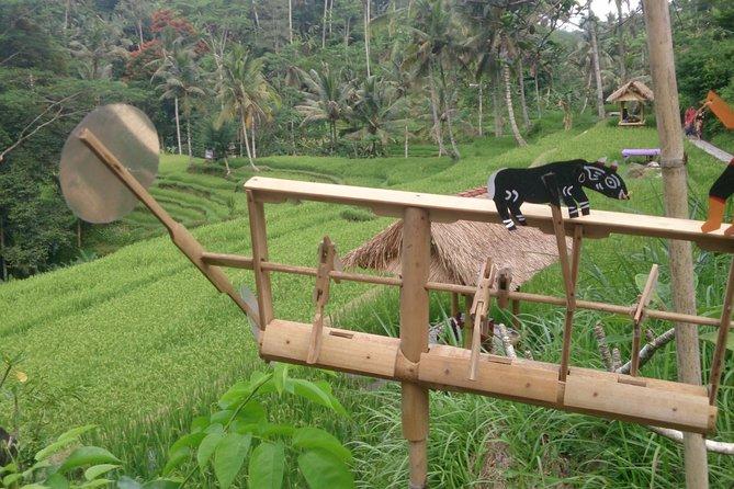 Ubud Country Side - Visit Gunung Kawi - Tirta Empul Temple-Tegalalang Ricefiel