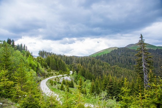Guided Day from Bucharest to the Carpathian Mountains