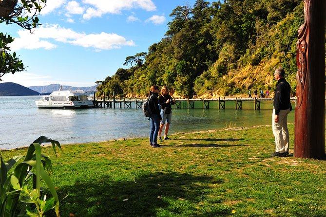Motuara Island Bird Sanctuary and Ship Cove Cruise from Picton