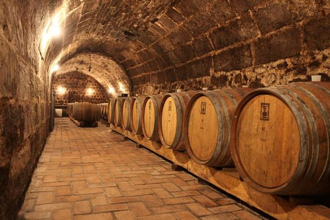 Half-day Wine Tasting Tour in Etyek Wine Country near Budapest