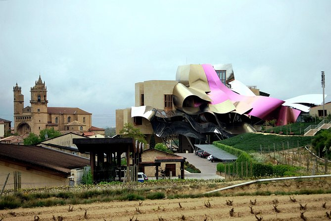 La Rioja and Vitoria Wine Tour with Winery Visit