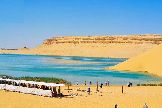 Egypt Oasis: Tour to El Fayoum Oasis and Wadi al Rayan