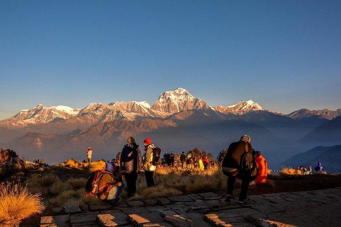 Wonderstruck Sunrise and Mountain View- Ghorepani Poonhill Trek Deluxe package