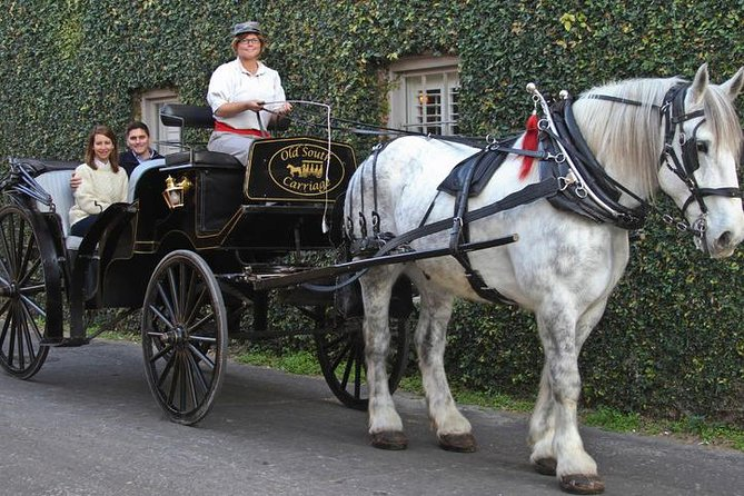 Charleston's Private Old South Carriage Daytime Tour