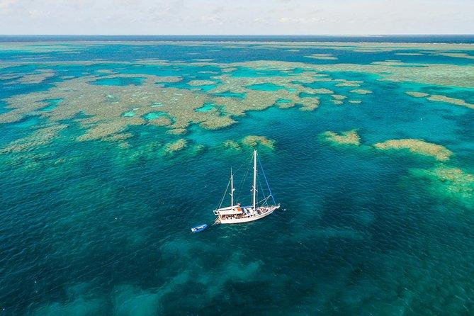 3 Day Whitsundays Sailing and Diving Adventure: Kiana