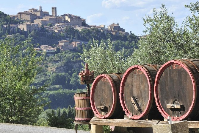 2 wineries Small Group tour: Chianti and Supertuscan from Lucca