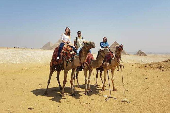 quad bike and camel ride