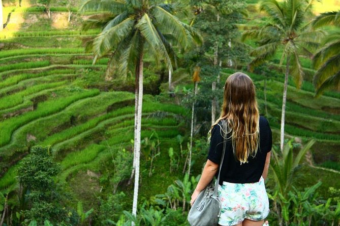 Half Day UBUD: Monkey Forest, Rice Terrace, Coffee Plantation & Swing