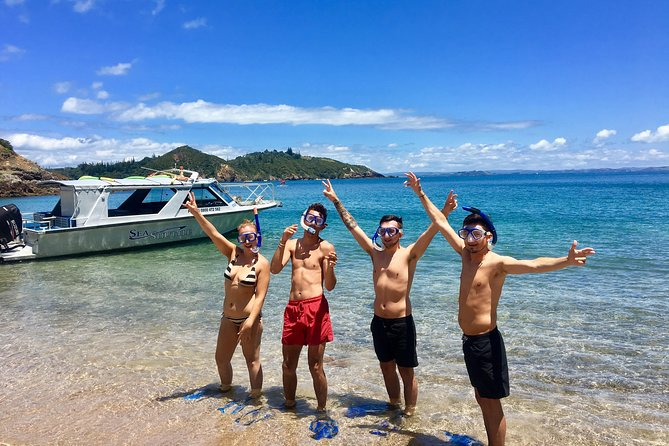 Bay of Islands Cruise & Island Tour - Snorkel, Hike, Swim, Paddleboard, Wildlife