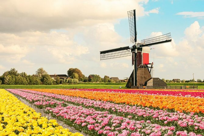 Sightseeing Tour to the windmills and Volendam from Amsterdam