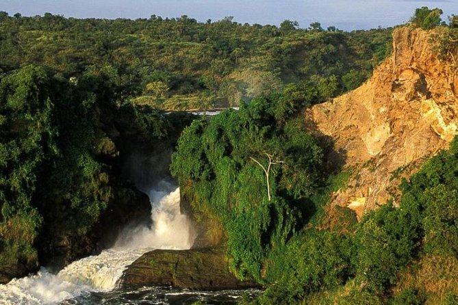 5-Day Murchison Falls, Budongo Chimps, Wildlife Big 5 Safari