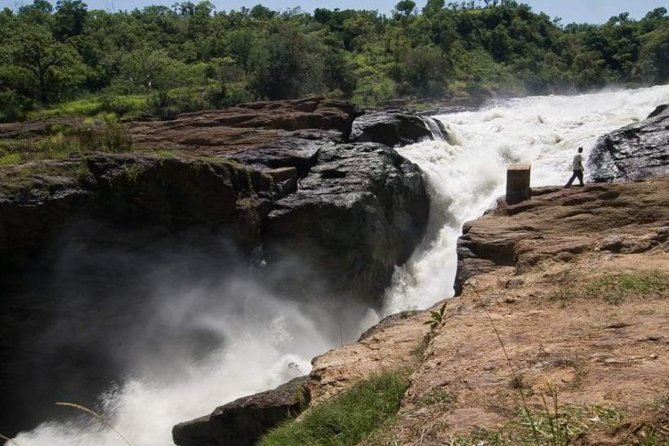 6-Day Murchison Falls and Kidepo NP Wildlife Safari