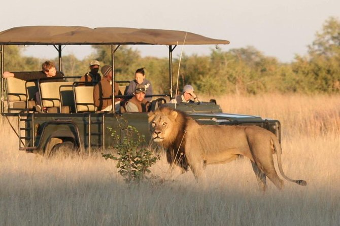 Hwange (Safari) Day Trip from Victoria Falls