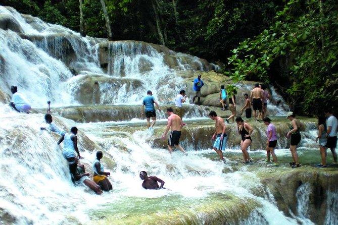 Montego Bay to Dunn's River Falls Half-Day Trip