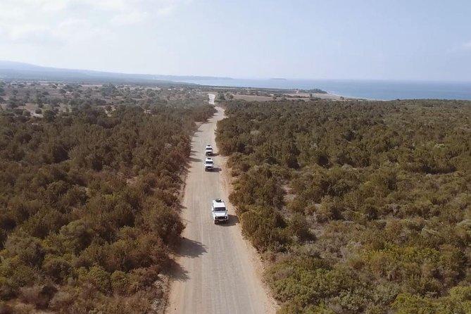Safari Tour Akamas Paphos