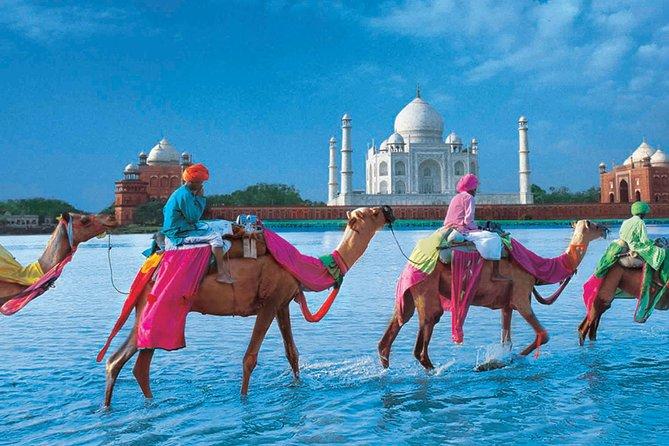 Private Trip : Agra Full-day Tour With Taj Mahal , Agra Fort & Fatehpur Sikri
