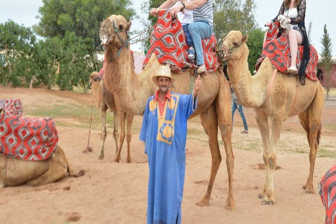 Agadir Camel riding with Hotel Transfers