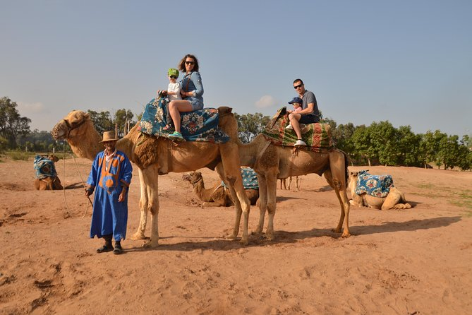 Camel ride at the sunset in Agadir with Hotel Transfers