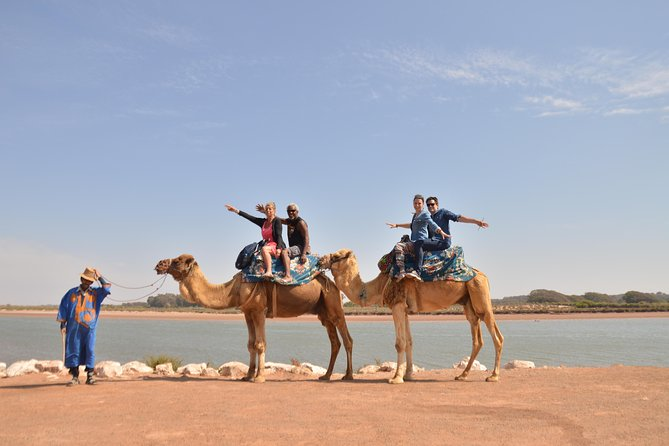 Agadir Camel riding and moroccan couscous dish with Hotel Transfers
