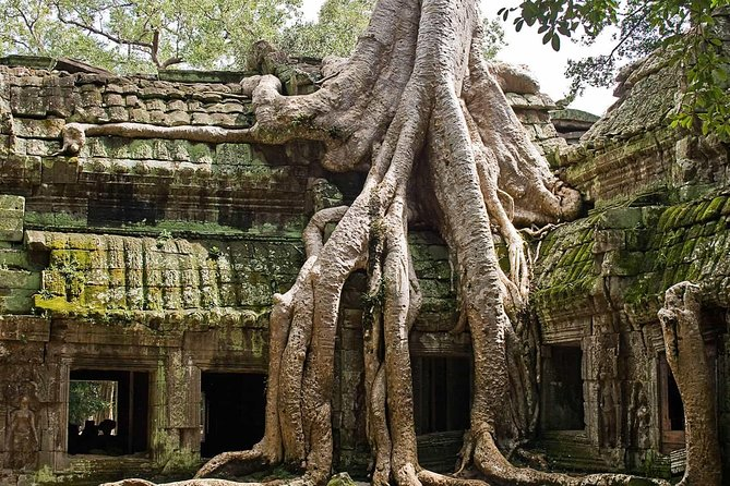2 Days Angkor Wat, Bayon, Ta Prohm, Others with Banteay Srei Tour