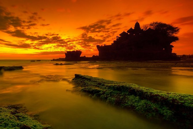 Private half day tanah lot sunset tour