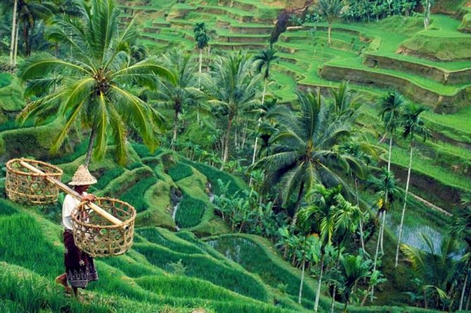 Private Ubud Traditional Tour