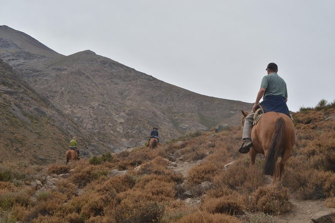 Andean Horse Ride Yerba Loca Sanctuary - Private tour from Santiago