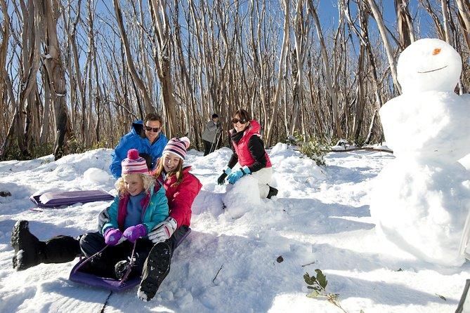 Viagem de um dia à neve do Lake Mountain Alpine Resort, incluindo degustações de chocolate do Vale Yarra, de Melbourne