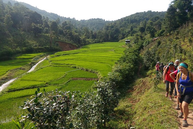 Hsipaw Trekking Tours by Firefly