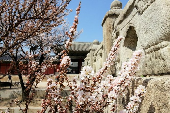 Full-Day Small Group Cherry Blossom Tour in Seoul