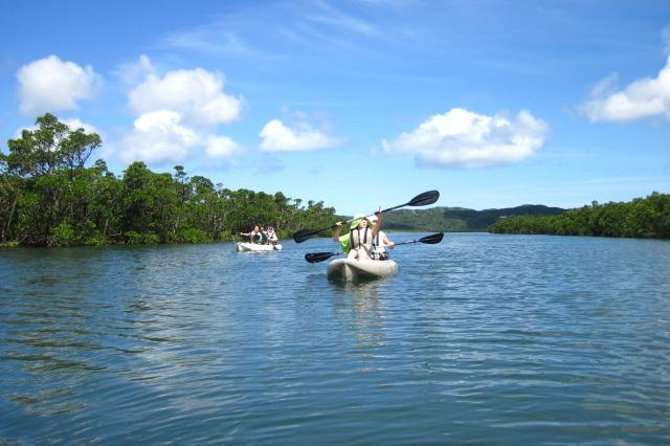 Iriomote Island Kayaking Eco-Tour Including Sangara Falls Trek