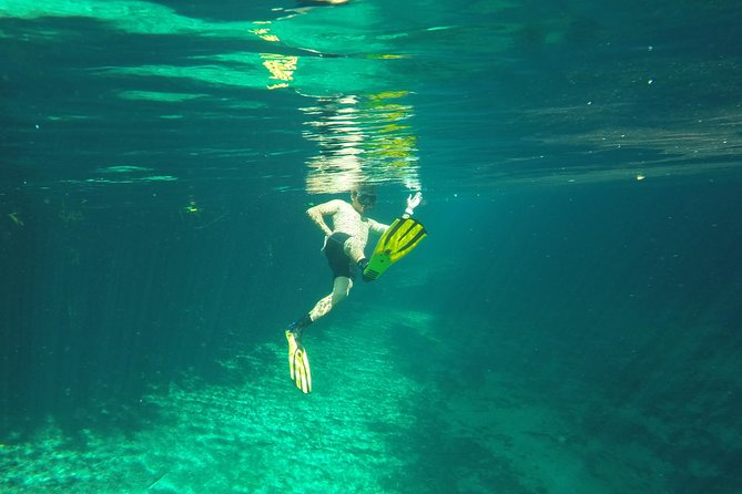 Dos Ojos & Reef Snorkel Tour from Tulum - Small Group - All Inclusive