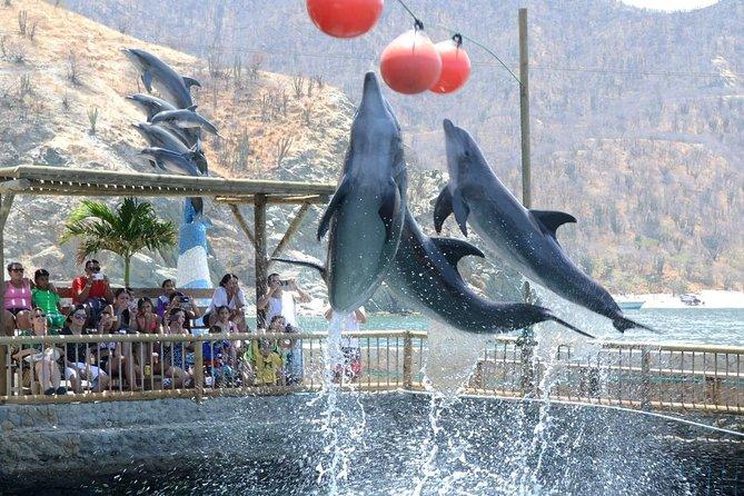 Rodadero Sea Aquarium and Museum Admission Ticket
