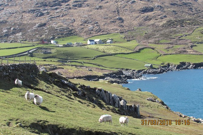 Private Tour of The Beara Peninsula