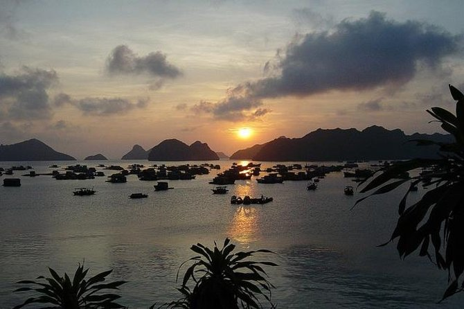 3-Day Luxury Bai Tu Long Bay Cruise on the Dragon Pearl Junk Boat