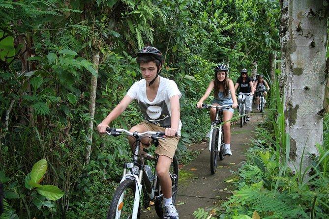 Bali Countryside Cycling Tours