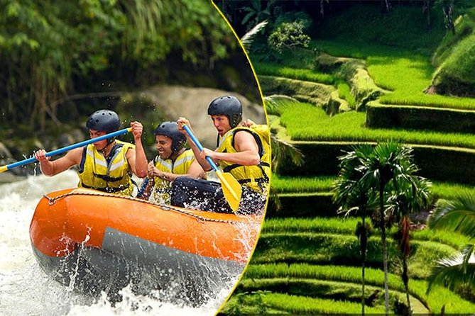 Bali Rafting and Private Combination Ubud Tour