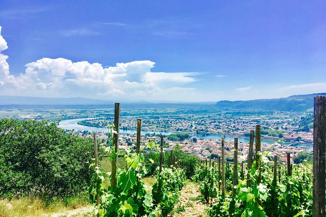 Northern Rhône Valley Day Tour with Wine Tasting from Lyon