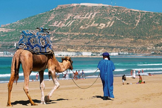 Agadir Guided city tour from agadir port with lunch
