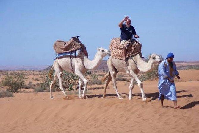Agadir Desert Safari Day Trip with Lunch and Agadir City Tour