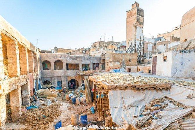 Fez cultural tour