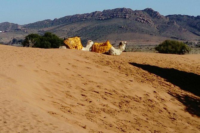 Safari Dagtrip vanuit Agadir