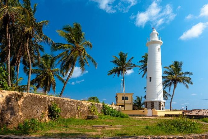 Highlights Of South Srilanka Day Tour From Colombo