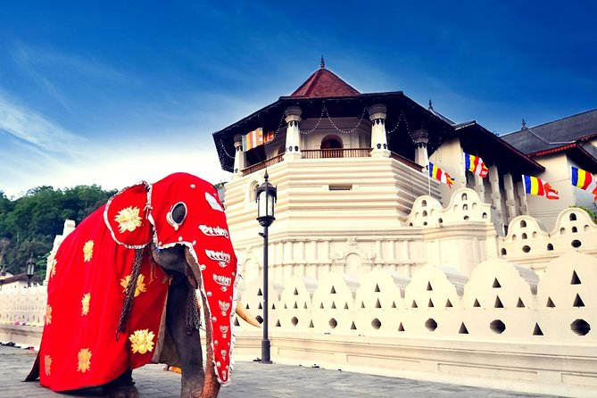 Full Day Tour To Kandy photo 1