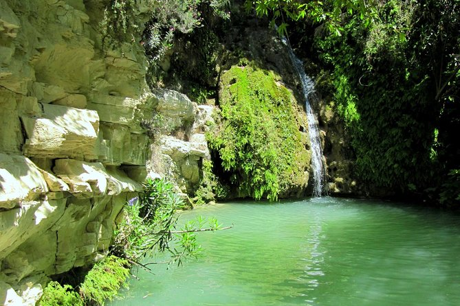 Tour of Akamas including Adonis Waterfalls with Buggy (HALF DAY)