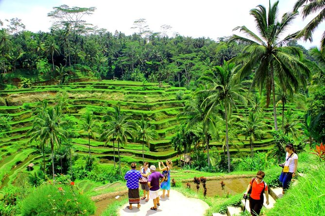 Bali Full-Day Countryside Sightseeing Trip with Lunch