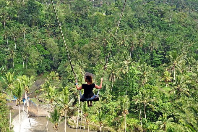 Ubud Tour mit Jungle Swing